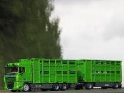 DAF 105XF  PEZZAIOLI Viehtransport-Hängerzug
